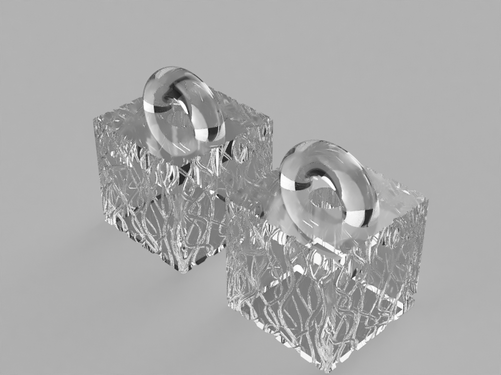 transparent box-jellyfish